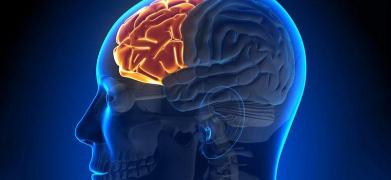 Ödev: Epilepsi nedir?