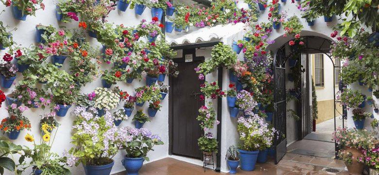 İSMEK Balkon Bahçeciliği kursu