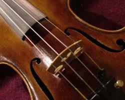 İSMEK Keman (Türk Müziği) 2. Seviye kursu