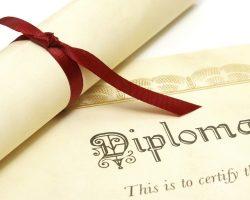 Kariyer odaklı diploma tercüme hizmeti